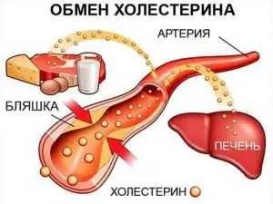 холестерол