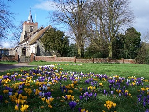 church%20and%20crocus 1