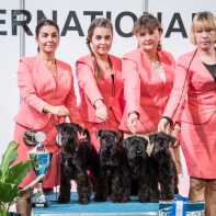 BIS Breeder Competition