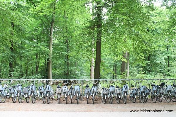 Visitar el Parque Nacional Holandés Hoge Veluwe