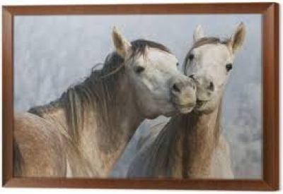 tableau avec deux chevaux