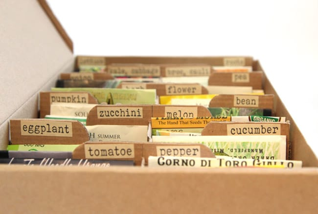 shoebox gardening seeds organizer