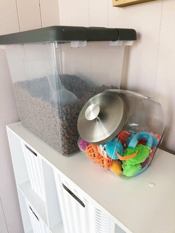 cat feeding area