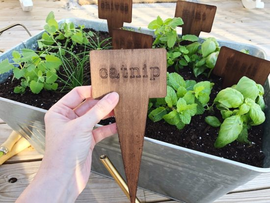herb garden markers with basswood