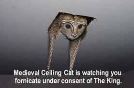 Medieval Ceiling Cat