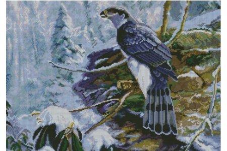Канва с рисунком Новая Слобода Сокол, 29,7*42см - 3059