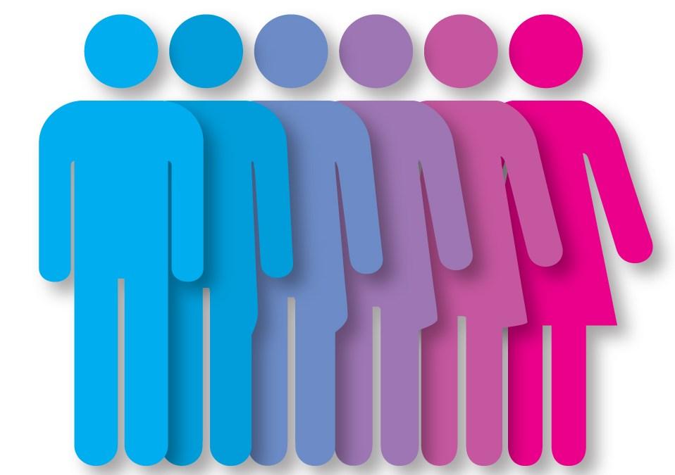 Théorie du genre : augmentation des actions contre l'homophobie et la transphobie en milieu scolaire à la rentrée