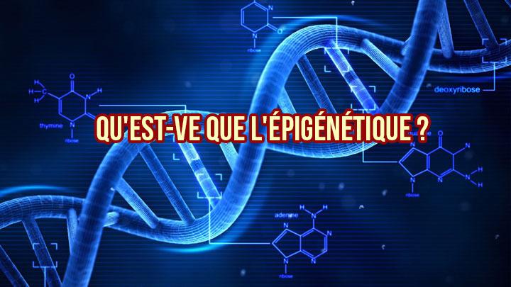 Qu'est-ce que l'épigénétique ?