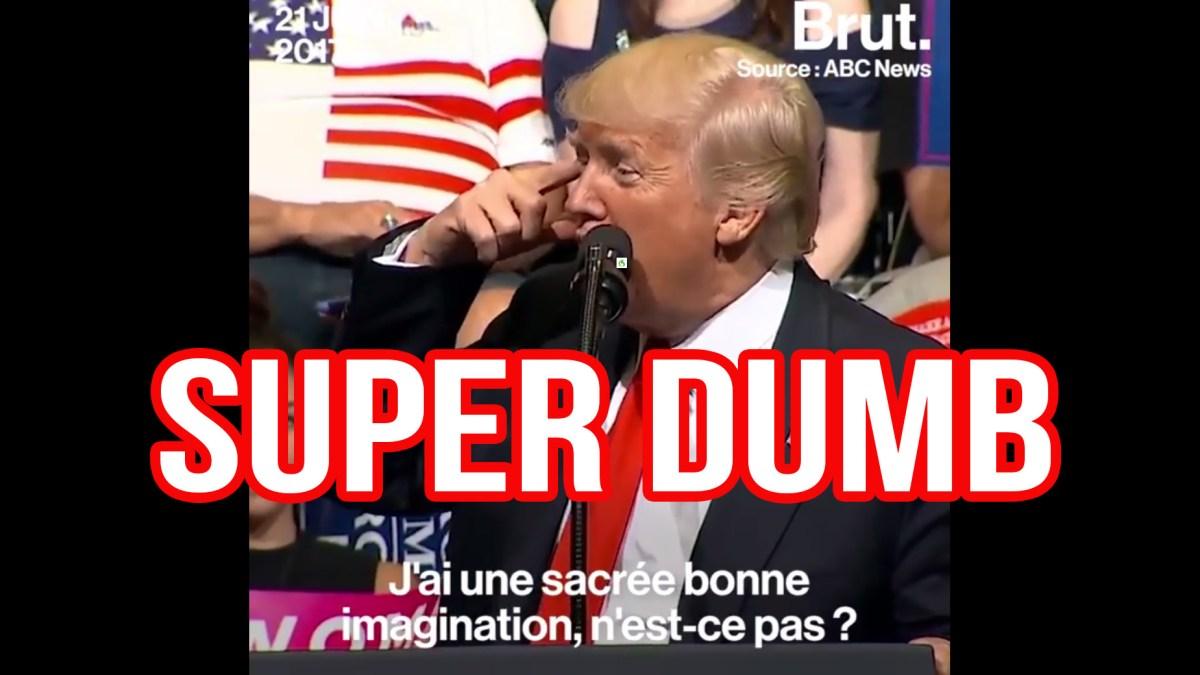 Donald Trump a une une idée lumineuse et ça se voit !