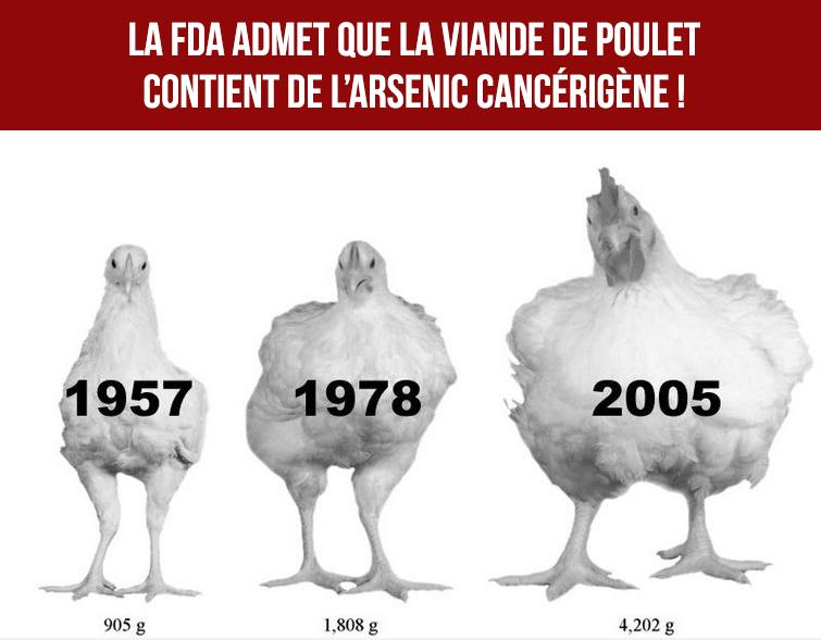 La FDA admet finalement que la viande de poulet contient de l'arsenic causant le cancer