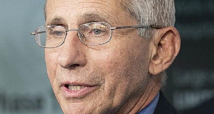 « Le Dr Fauci mène une campagne de désinformation contre l'hydroxychloroquine.» dixit Dr Harvey Risch