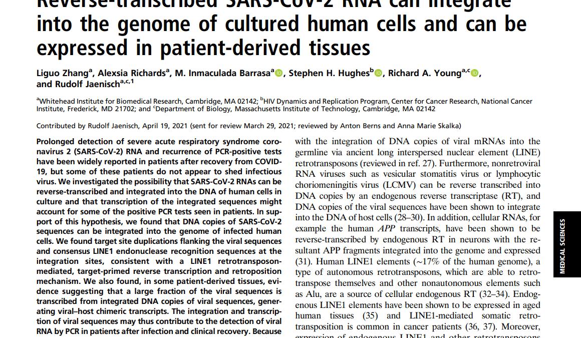 Selon le Pr Raoult, la science a démontré l'intégration du SARS-CoV-2 dans le génome humain !