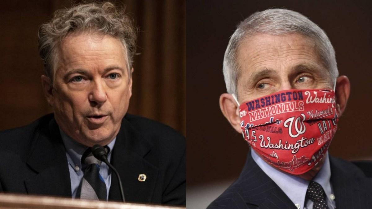 Fauci ridiculisé par Rand Paul au Sénat US !