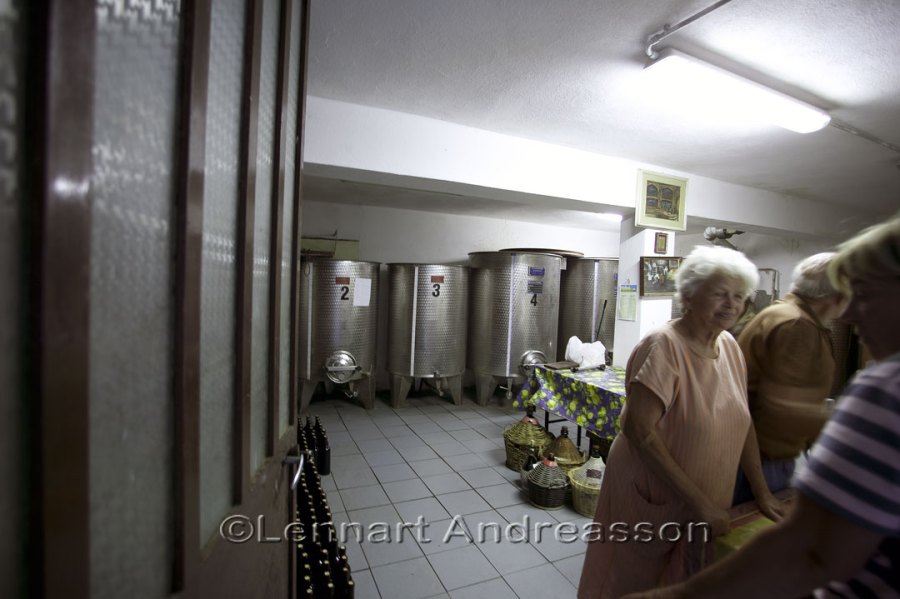 Tour in the wine cellar in Sldano, Italy