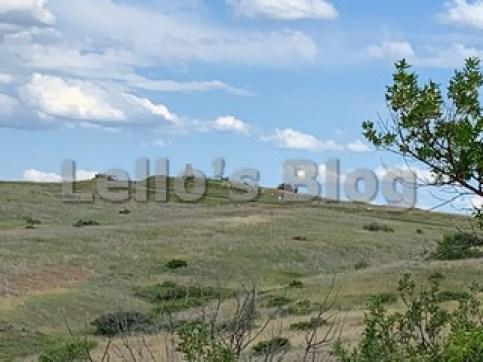 Campo di Battaglia di LittleBighorn