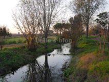 Parco degli acquedotti: la marrana