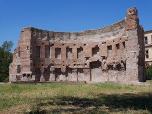 Terme di Traiano: Biblioteca