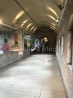 Porta S.Sebastiano: Mostra UNHCR
