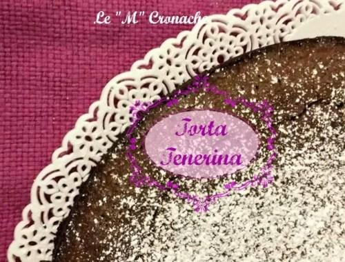 torta tenerina2