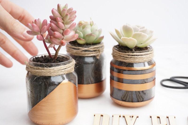 diy jolies petites plantes graphiques le meilleur du diy. Black Bedroom Furniture Sets. Home Design Ideas