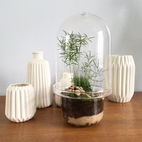 Les plus beau des terrarium do it yourself