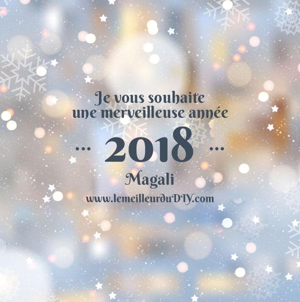 Bonne année 2018 de la part de Magali du blog LEMEILLEURDUDIY.COM