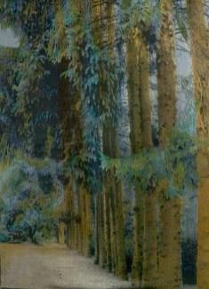 Jacquard Weaving, cotton, linen, dyes, private collection