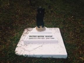 cemetery of negativism