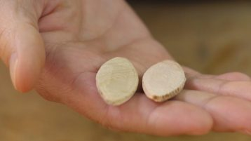 biscuit joinery