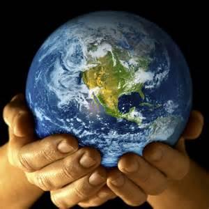 Bumi lestari dengan lem kayu non toxic