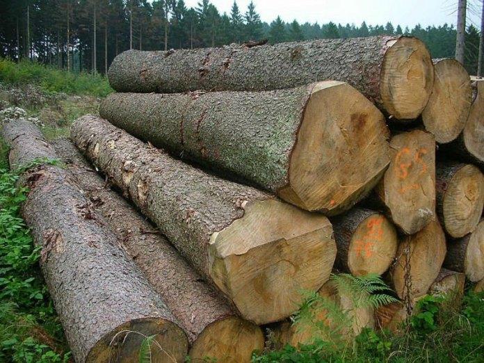 kayu log