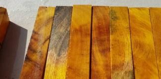 keindahan kayu nangka
