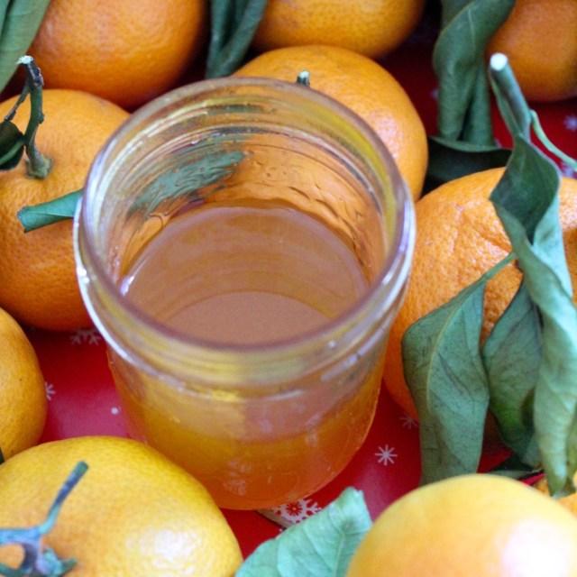 satsuma syrup in a jar