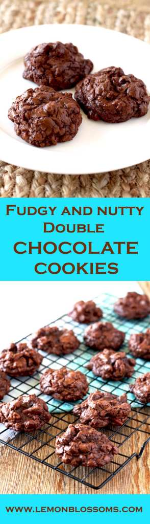 Gooey chocolate, chocolate chunks and crunchy pecans make these almost flour-less Fudgy and Nutty Double Chocolate Cookies pure decadence! Thick, rich and irresistible. These cookies are a chocolate lover's dream!