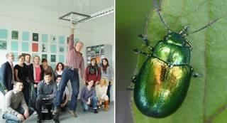 Cientistas criam fita adesiva que te deixa pregado no teto como uma lagartixa
