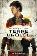Labyrinthe Newt
