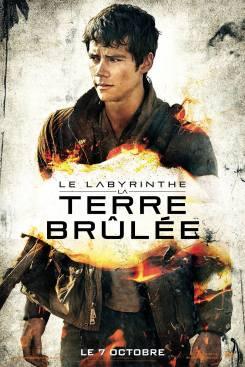 Labyrinthe Thomas