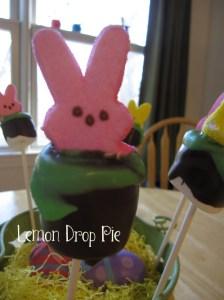 http://www.lemondroppie.com/2013/03/bunny-marshmallow-pops-recipe/