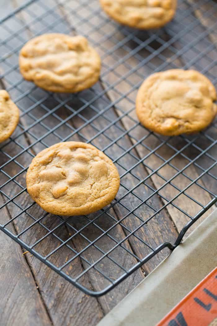 Soft gingerbread cookies with butterscotch chips! A new addition for your holiday sweets!