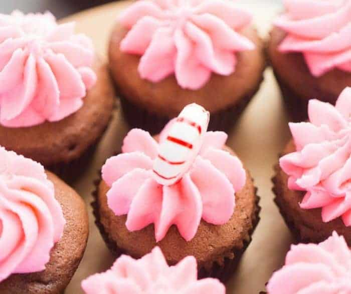 easy mini cupcakes from scratch