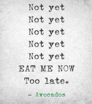 Avocado - not yet - too late