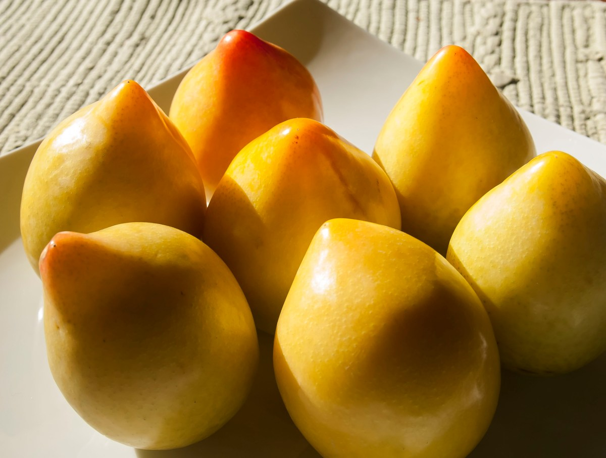 Lemon Plums from Chile in season at the end of winter. Recipe for low fat granola to go with homemade yogurt with lemon plums. A healthy and nutritious breakfast that the whole family with love.