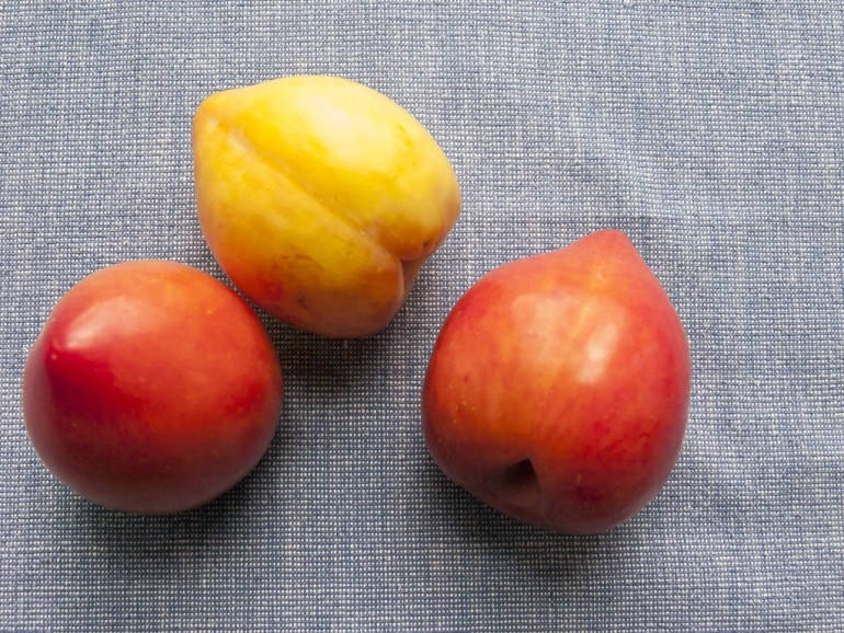 Ripening lemon plums