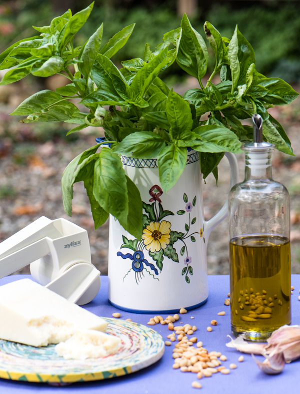Sweet Basil Pesto recipe