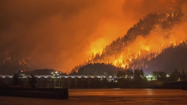 https://i1.wp.com/www.lemonwire.com/wp-content/uploads/2017/09/fire-devastates-oregons-columbia-gorge--and-nature-lovers.jpg