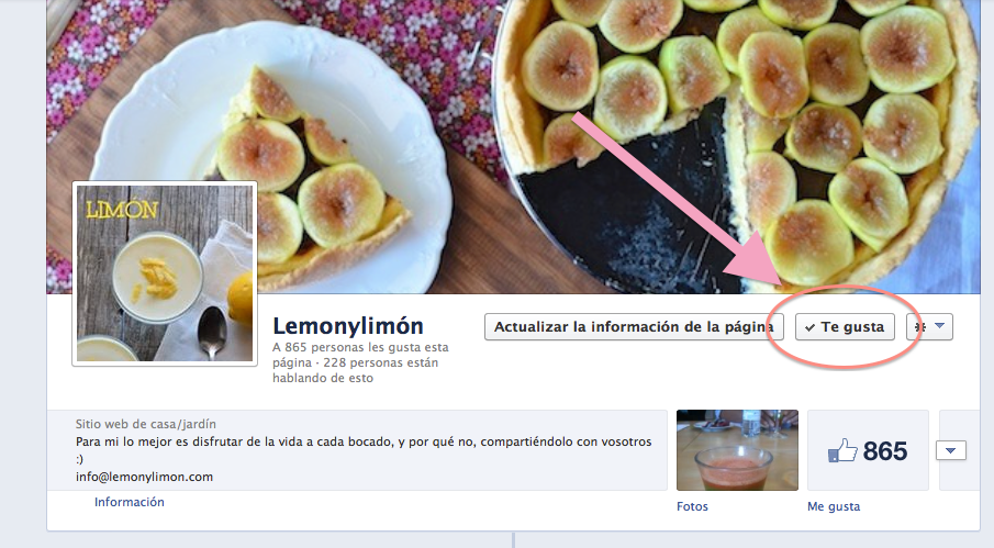 página facebook lemonylimon