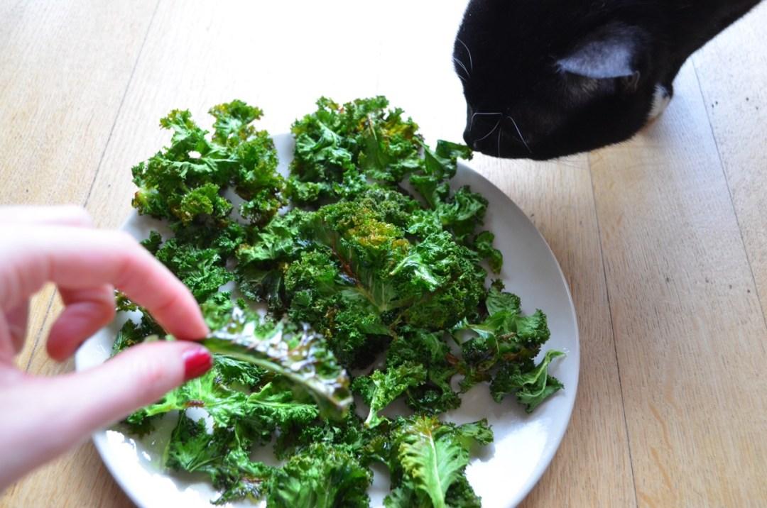 chips de kale o col rizada