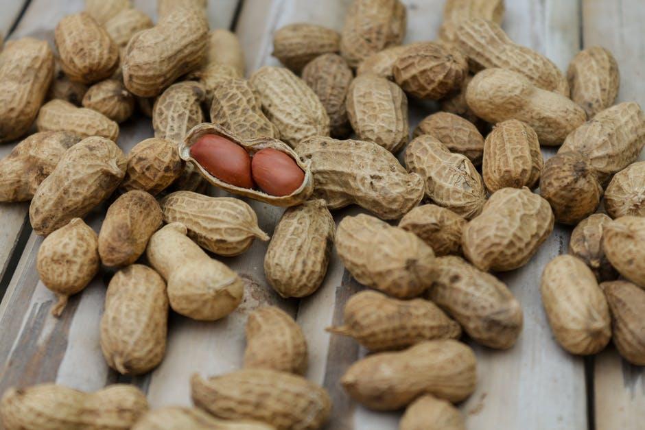 los cacahuetes son legumbres, no frutos secos