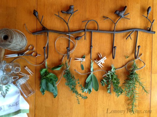 Dried Fresh Herbs