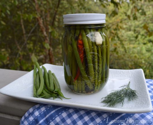 Refrigerator Green Bean Pickles3